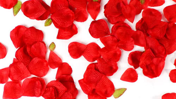 Red Rose Scatter petals artificial