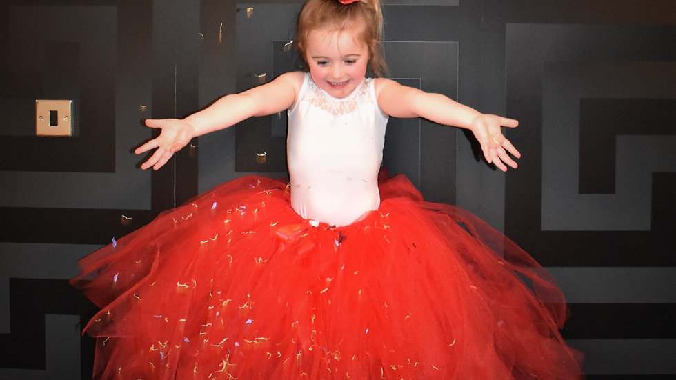 Red Princess TuTu's~  Flowergirl TuTu ... Wedding TuTu Skirt