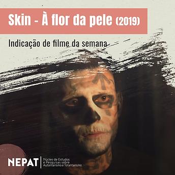 NEPAT_post_skin.png