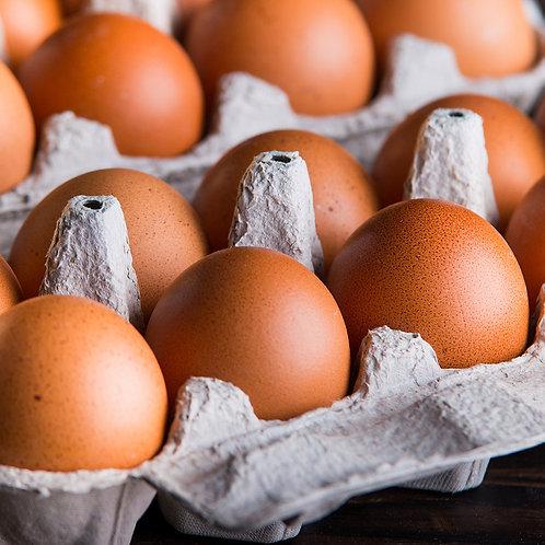 One Dozen Perfectly Pastured Eggs