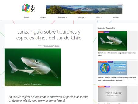 DIVULGA.CL: Lanzan guía sobre tiburones y especies afines del sur de Chile