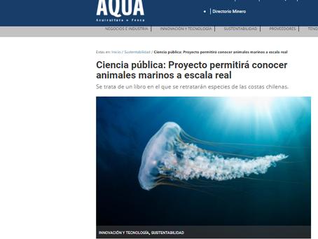 Prensa AQUA: SIN ZOOM, Animales Marinos, nuevo proyecto adjudicado por Oceanósfera