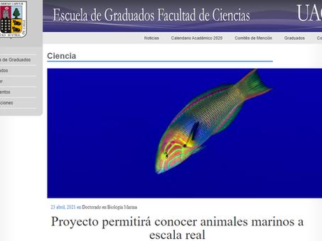Escuela de Graduados UACh destaca nuestro proyecto SIN ZOOM, Animales Marinos