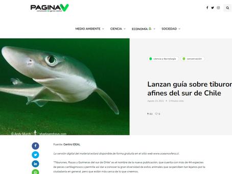 PAGINA V: Lanzan guía sobre tiburones y especies afines del sur de Chile