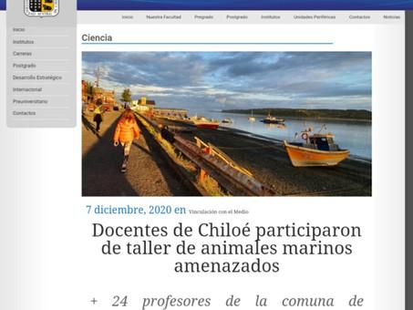 Docentes de Chiloé participaron en nuestro taller de animales marinos amenazados