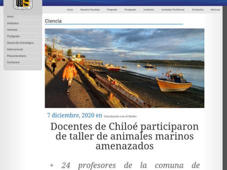 Noticias UACh: Docentes de Chiloé participaron en nuestro taller de animales marinos amenazados