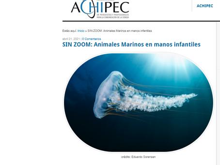 """Noticias ACHIPEC: """"SIN ZOOM, Animales Marinos"""", nuevo proyecto Oceanósfera en manos infantiles"""