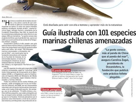 Diario Las Últimas Noticias: 101 especies marinas amenazados en nueva guía de Oceanósfera