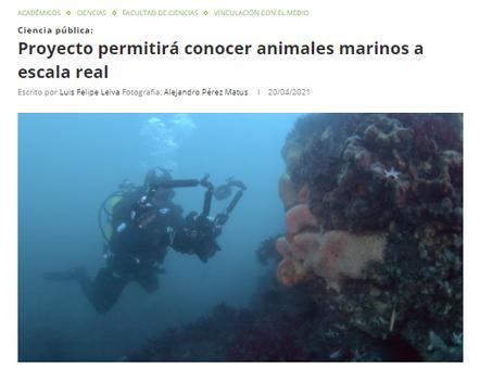 """""""SIN ZOOM, Animales Marinos"""", nuevo proyecto adjudicado por Oceanósfera en noticias UACh"""