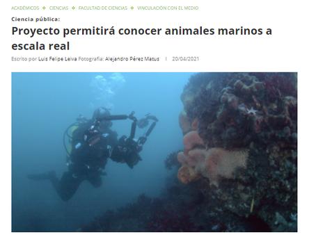 """Noticias Vinculación UACh: """"SIN ZOOM, Animales Marinos"""", nuevo proyecto adjudicado por Oceanósfera"""