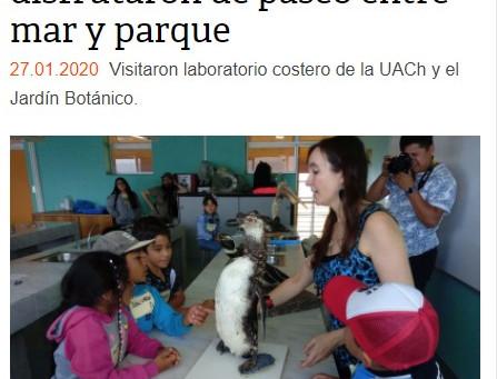 """Diario Austral de Los Ríos: Nuestro taller """"Explorando la fauna marina del sur de Chile"""""""