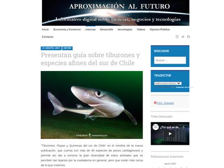 Aproximación al Futuro: Presentan guía sobre tiburones y especies afines del sur de Chile