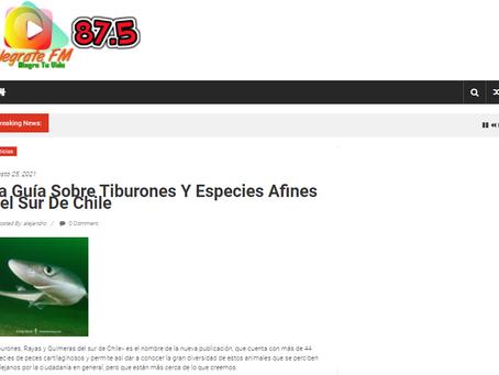 Radio Alégrate FM: La Guía Sobre Tiburones y Especies Afines del sur de Chile