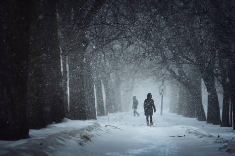 Tempête de neige au Parc La Fontaine