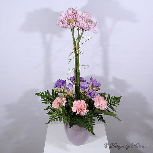 Topiary Chrysanthemum