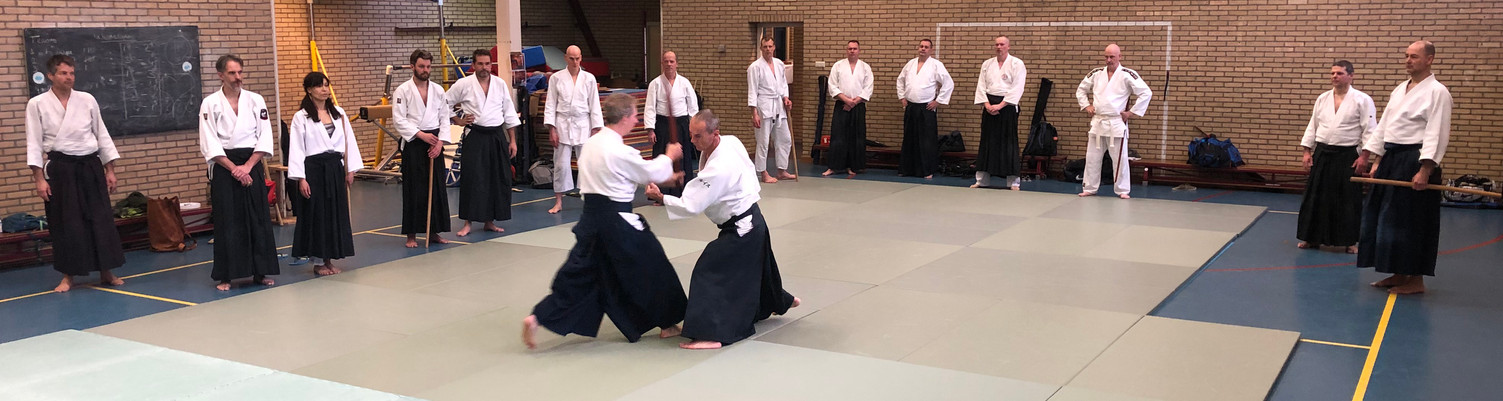 Aikido Seminar Weesp March 2019 - 3.JPG