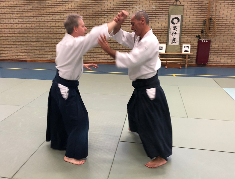 Aikido Seminar Weesp March 2019 - 20.JPG