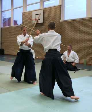 Aikido Seminar Weesp March 2019 - 18.JPG