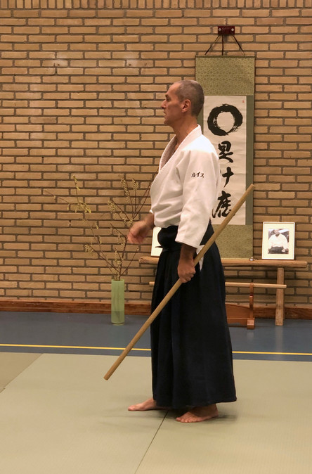 Aikido Seminar Weesp March 2019 - 7.JPG