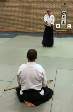 Aikido Seminar Weesp March 2019 - 12.JPG