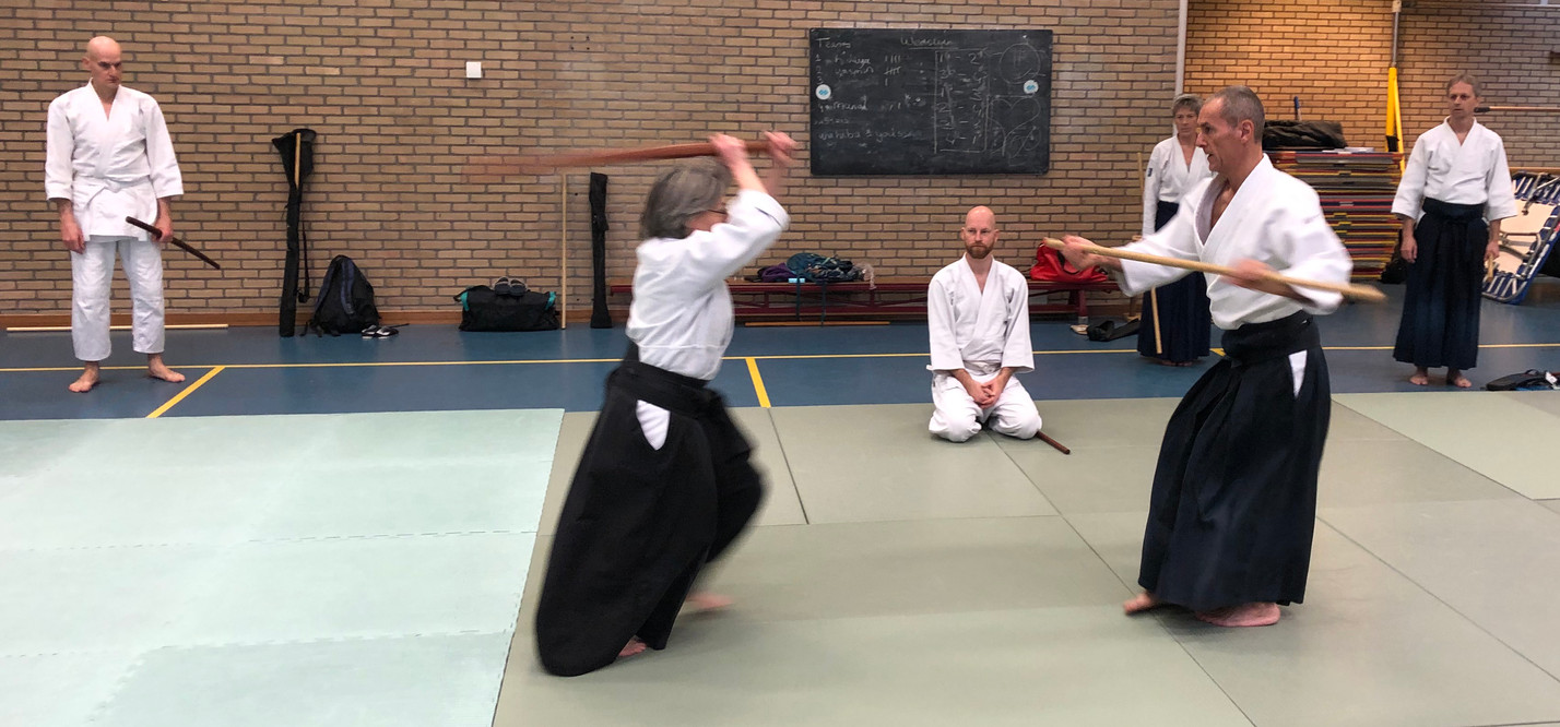 Aikido Seminar Weesp March 2019 - 6.JPG