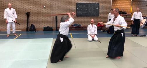Aikido Seminar Weesp March 2019 - 6.JPG