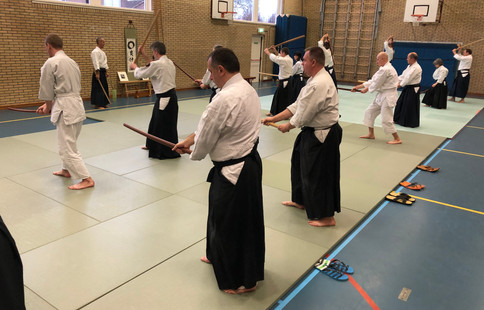 Aikido Seminar Weesp March 2019 - 1.JPG
