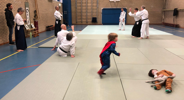 Aikido Seminar Weesp March 2019 - 9.JPG