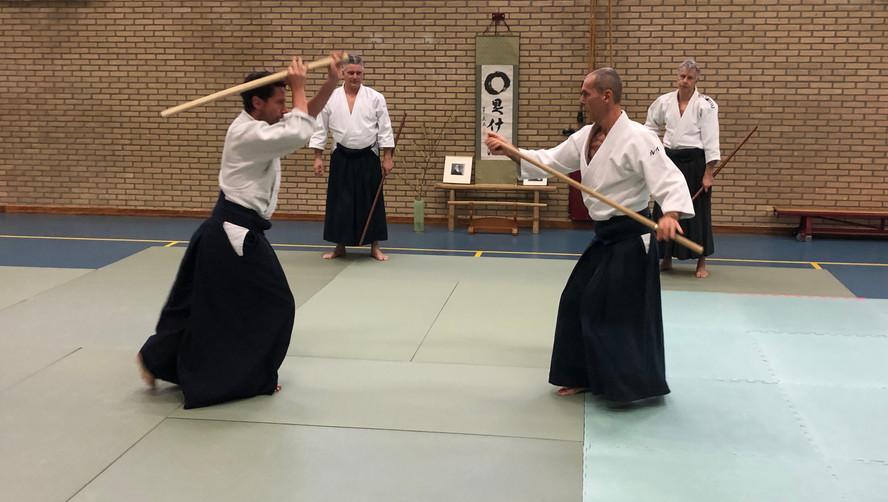 Aikido Seminar Weesp March 2019 - 13.JPG