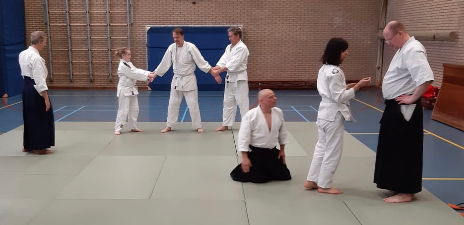 Aikido intensive in Weesp, 23-3 2019