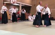 Aikido Seminar Weesp March 2019 - 10.JPG