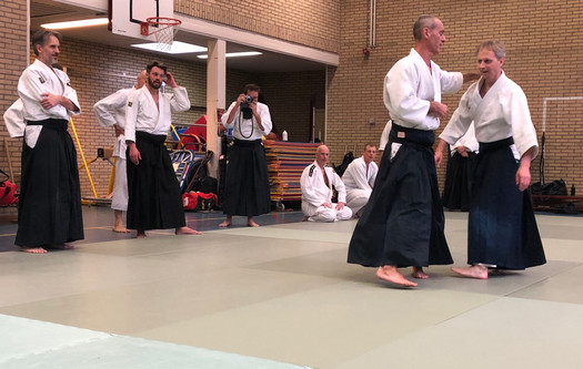 Aikido Seminar Weesp March 2019 - 10.JPG