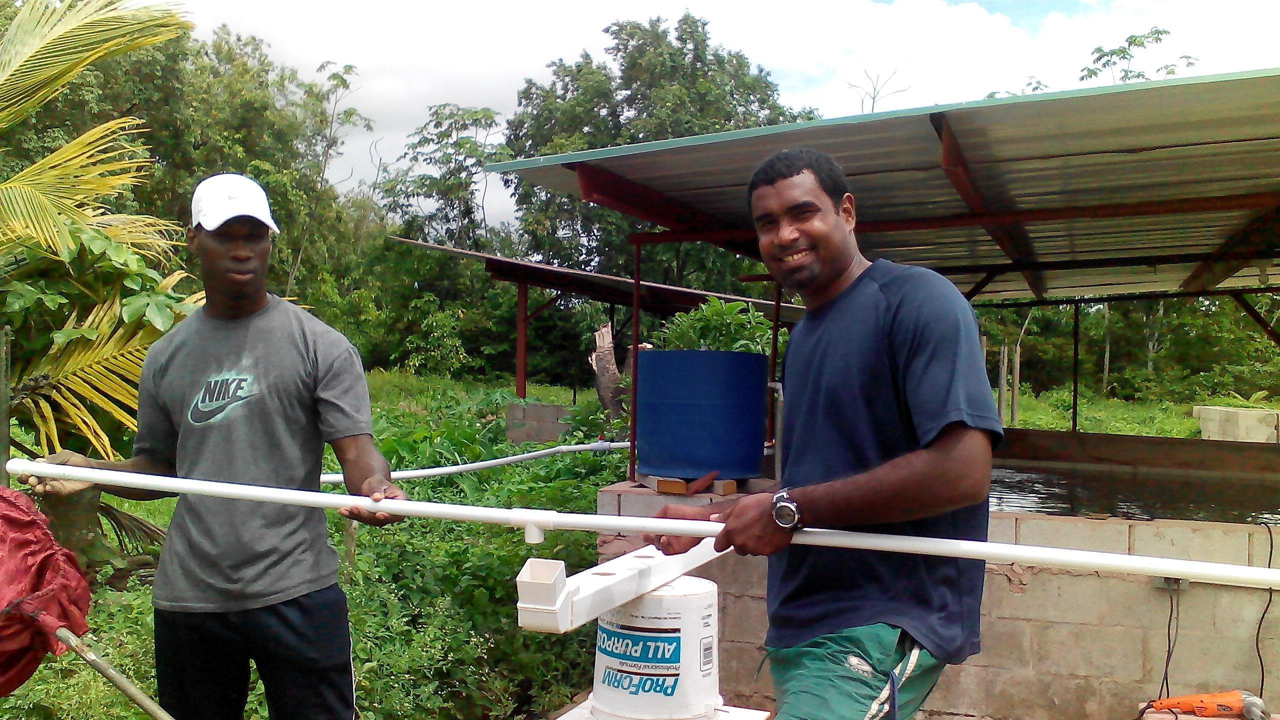 setting up of Aquaponic farming