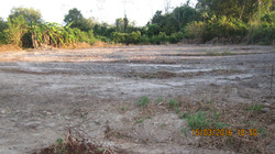 preparing the grounds for developments of Broiler chicken pens