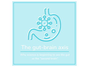 The Gut Brain Axis: How Gut Health Influences Mental Wellness