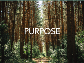 Purpose: Walking a Meaningful Path in Life