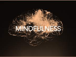 The Neuroscience of Mindfulness: How Meditation Can Shape Your brain