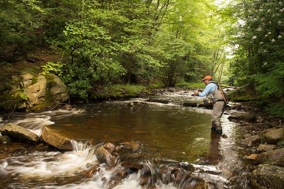 Fishing on Hayes Creek