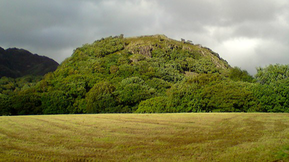 The hill of Dinas Emrys