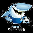 sharky-sito.png