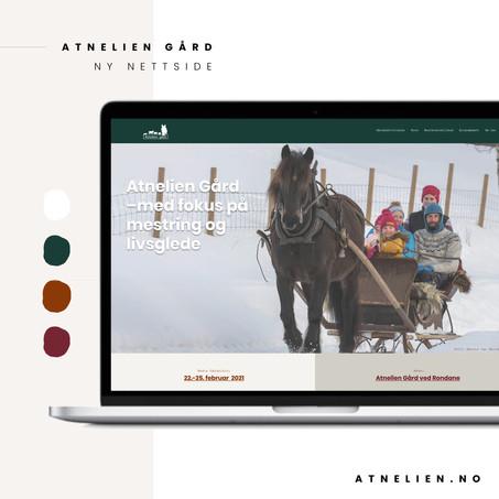 Branding_Atnelien_nettside.jpg