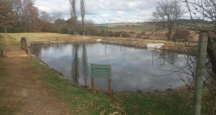 Full pond.jpg