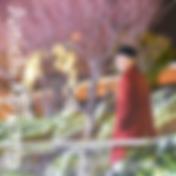 スクリーンショット 2020-04-28 21.01.49.png