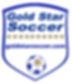 clear gold star logo_2019.jpg