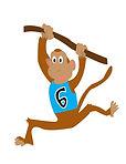 6.monkey.jpg