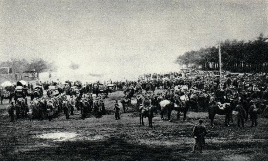 Roman Erster Weltkrieg 1916