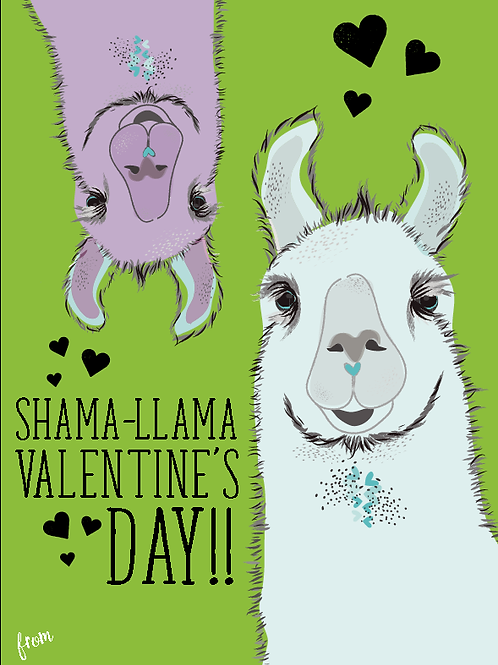 School Valentine Llamas Box Set