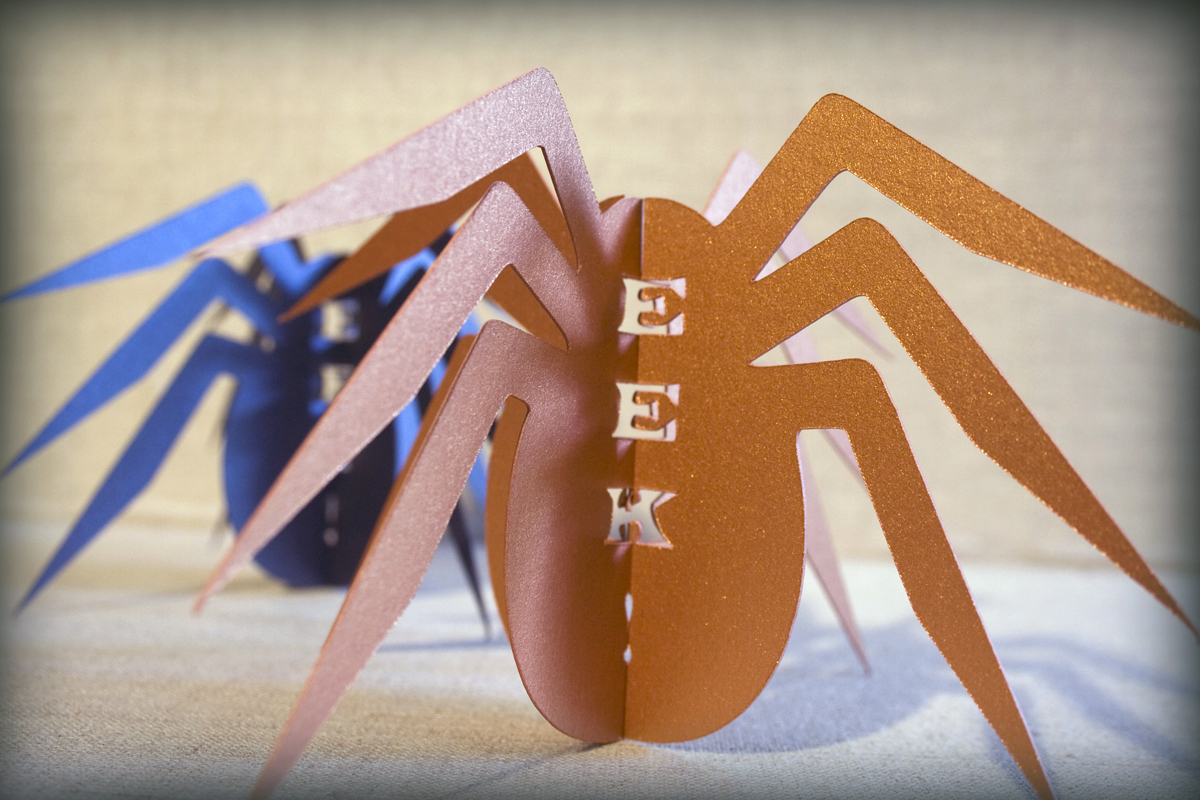 EEK Spider Pop-Up Cards
