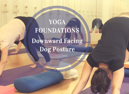Understanding Vinyasa Flow Yoga... Part 1: Downward Dog posture