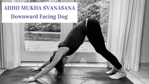 Foundations of yoga: downward facing dog pose
